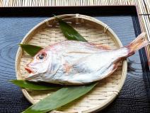 【解説】地鎮祭に鯛を供える理由とは?買い方や処理と食べ方まで紹介
