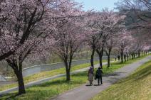 札幌市西区西野はアクティビティが豊富!自然を思いっきり楽しもう
